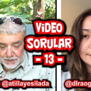 Atilla Yeşilada – Video Sorular – 13