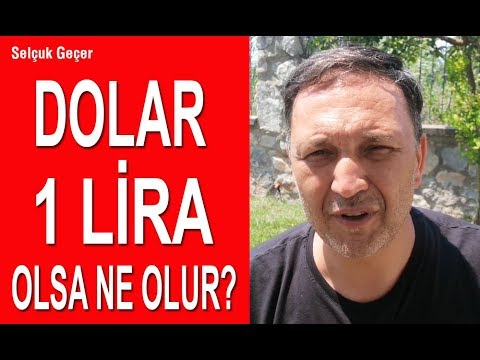 Dolar 1 Lira Olsa Ne Olur?
