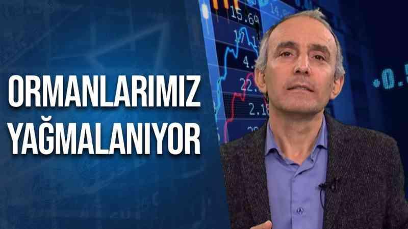 Türkiye Ormanlarını Nasıl Yağmalıyor?   Emin Çapa