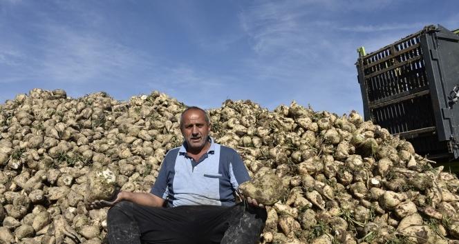 Şeker pancarı üreticileri, firmanın yüksek fire oranı göstermesinden dertli