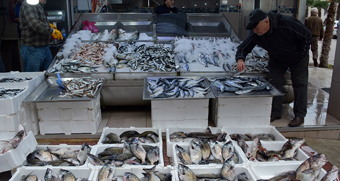 Sinop'ta balık tezgahları şenlendi