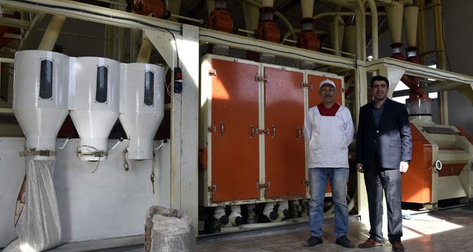 Türkiye'nin ilk karabuğday un ve bulgur tesisi Gümüşhane'de üretime başladı
