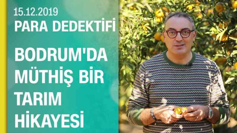 Cem Seymen, Bodrum'da müthiş bir tarım hikayesi anlattı - Para Dedektifi 15.12.2019 Pazar
