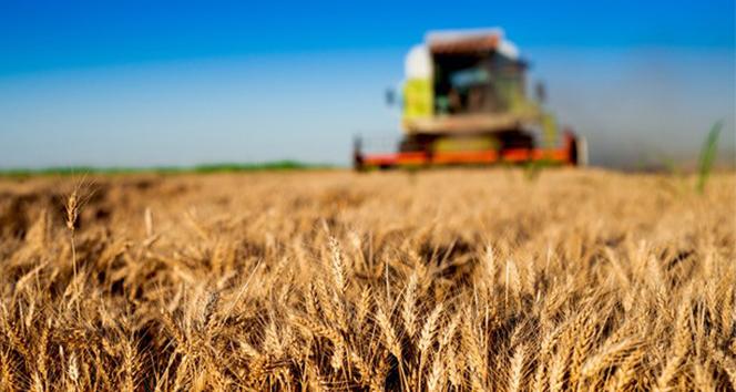FAO Temsilci Yardımcısı Dr. Selışık: 'Dünya gıda sanayini zorlu bir dönem bekliyor'