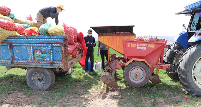 Niğde'de patates ekimi başladı