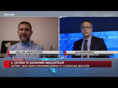 Türkiye 2020 yılı büyüme nasıl olur? |Doç. Dr. Hakkı Öztürk |Ali Değermenci| Dünya Halleri