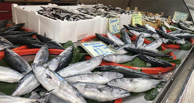 Bu sene tezgahlar da sofralar da balığa doyacak