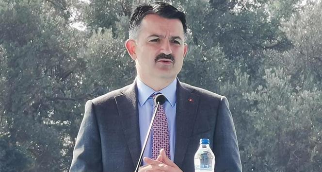 Bakan Pakdemirli: 'Çiğ süt destekleri bugün 18.00'den sonra yapılacak'