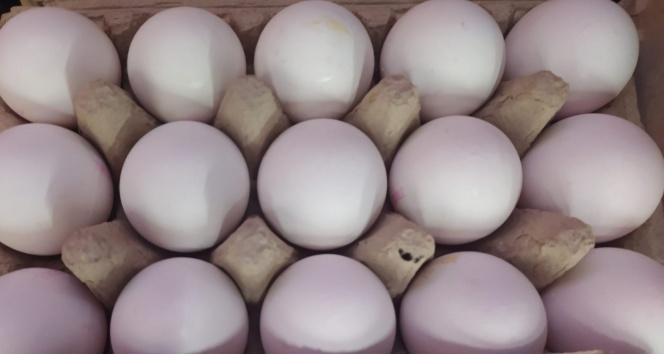 Bir koli yumurta 1 kilo kıymayı yakaladı