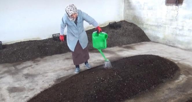 2 üniversite mezunu kadın, organik solucan gübresi üretiyor