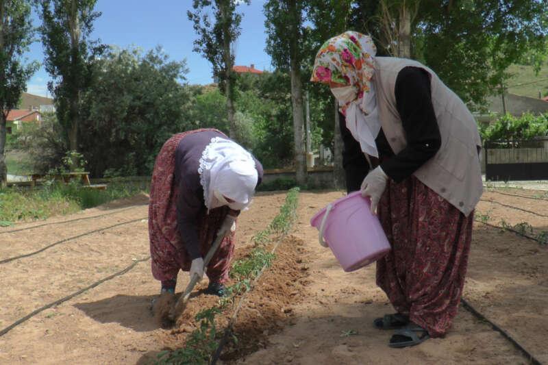 Çiftçi kadınlar yeni projeleri ile pandemide de üretmeye devam ediyor