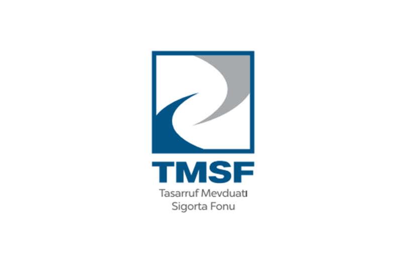 TMSF iki şirketi 325 milyon lira muhammen bedelle satışa çıkardı