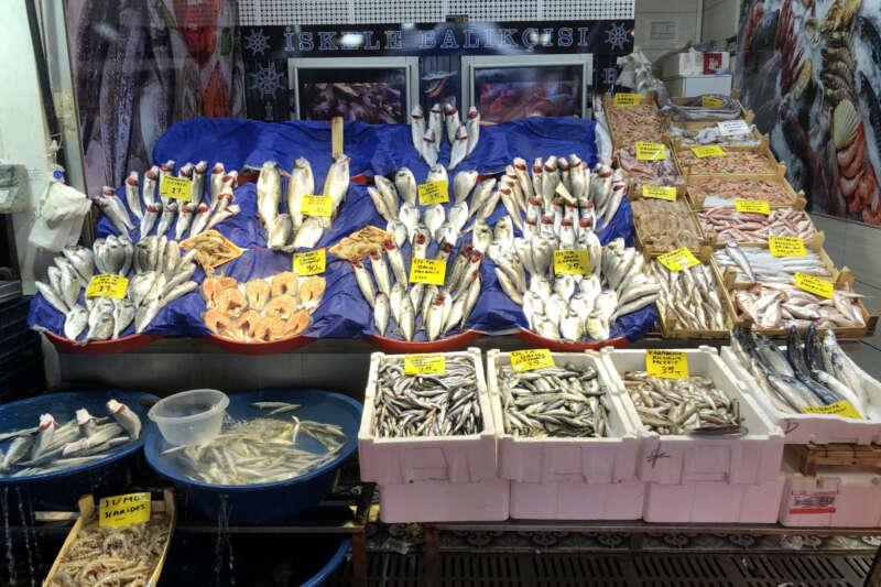Balık sezonunun ikinci gününde balık tezgahları şenlendi