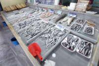 Marmara'da poyraz etkisini kaybetti, balık fiyatlarında düşüş bekleniyor