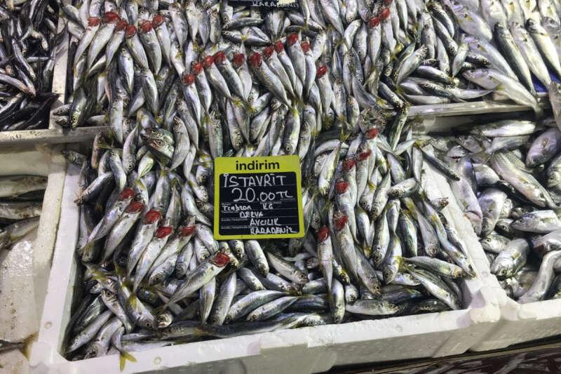 Balığa rağbet arttı