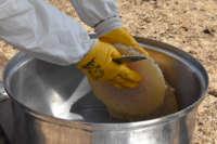 Bitlis'in meşhur karakovan balının hasadına başlandı