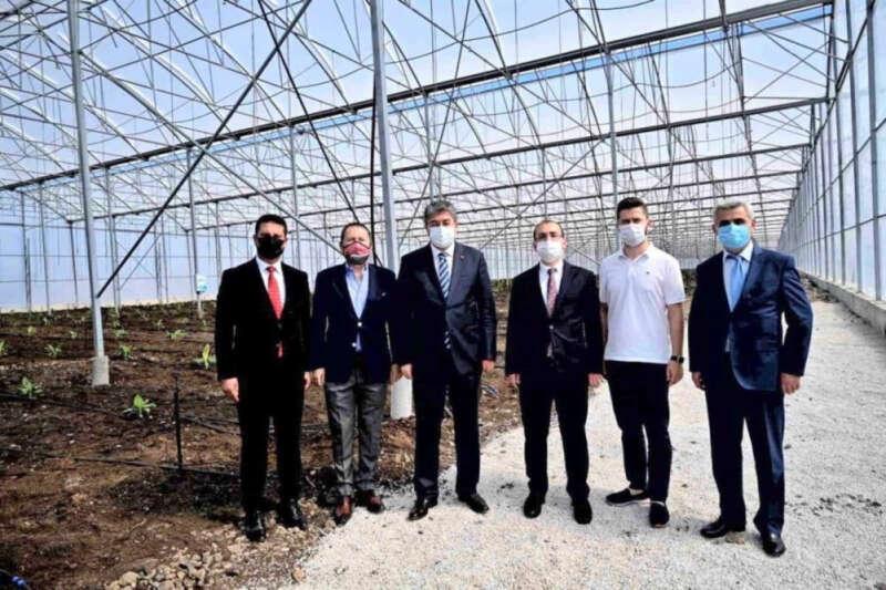 Türkiye'de ilk... OSB'ye muz serası kuruldu